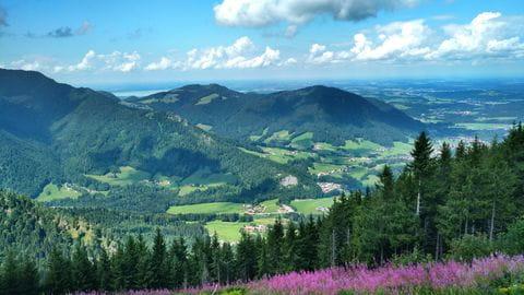 Centrale Alpen, Ruhpolding