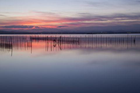 Albufera natuurgebied, Costa Blanca