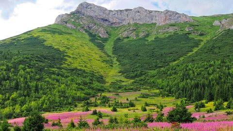 Hoge Tatra